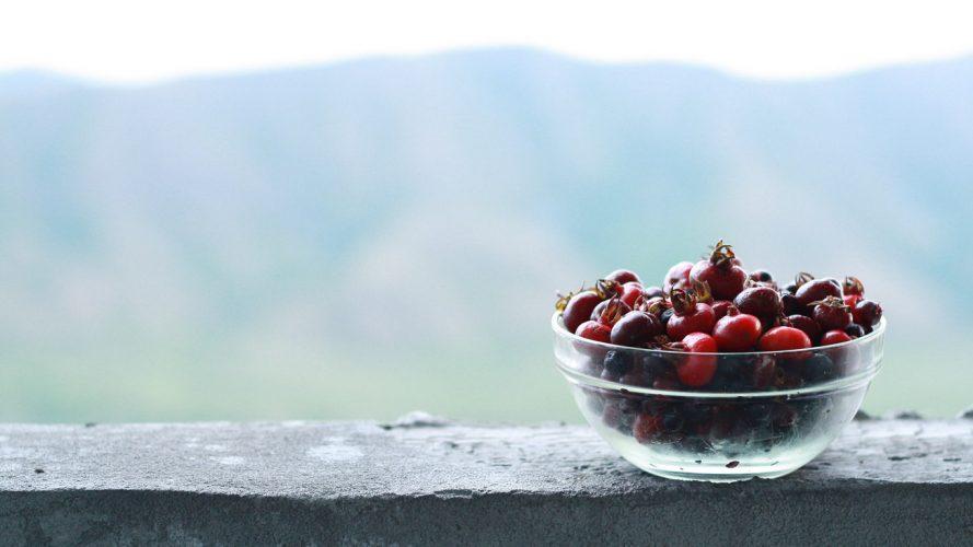 путешествия, travel, фото с путешествий, куда поехать в отпуск, природа, ягоды, казахстан
